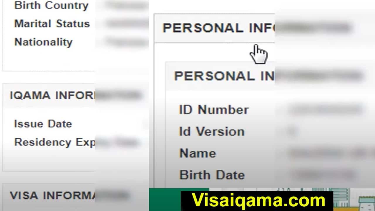 Check Visa Validity
