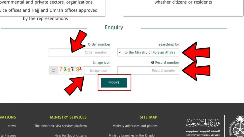 Check Visit Visa Status