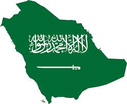 Saudi girl abducted in car