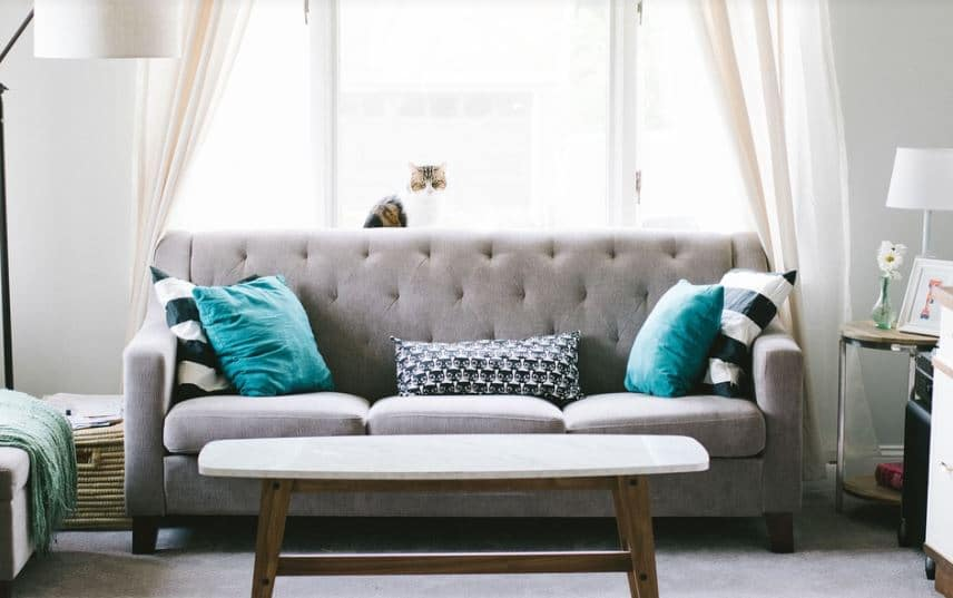 How To Check New Furniture For Bed Bugs