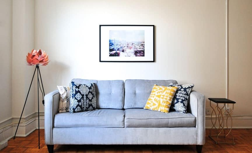 Check For Bed Bugs in Couch and Clean